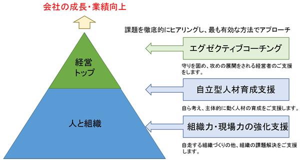 人材育成研修・エグゼクティブコーチングピラミッド